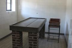 Mauthausen, autopsias